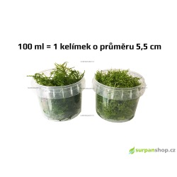 Prodejní velikost: kelímek 100 ml, viz druhá fotka.