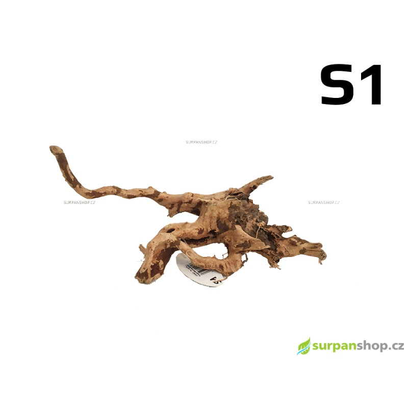 Kořen Finger Wood 29cm S1 (Red Moor wood, Amano wood)