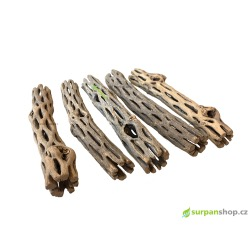 Cholla Wood 5 ks ø 1,5 - 2 cm, 14 - 16 cm