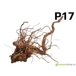 Kořen Dragon Wood 65cm - P17