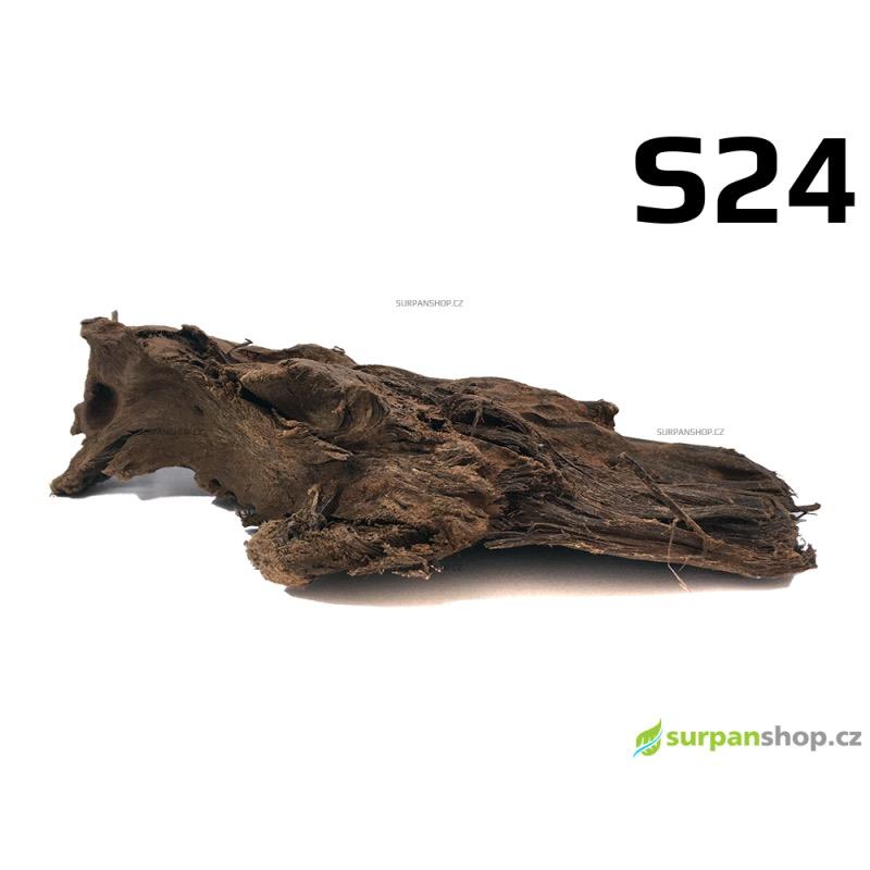 Kořen Mangrove 25cm - S24