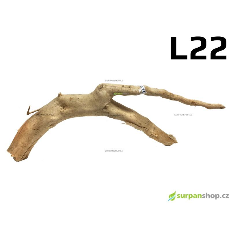 Kořen Finger Wood 50cm L22 (Red Moor wood, Amano wood)