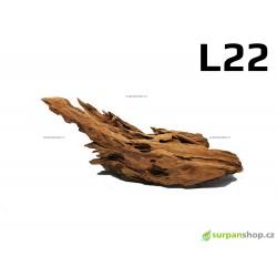 Kořen Mangrove 38cm - L22