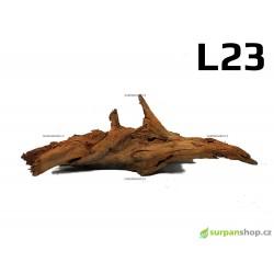 Kořen Mangrove 47cm - L23