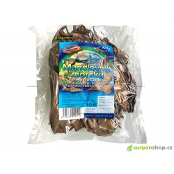 Mandlovník mořský - Terminalia Catappa - 100 g