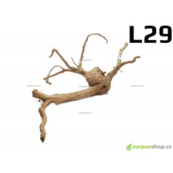 Kořen Finger Wood 62cm L29 (Red Moor wood, Amano wood)