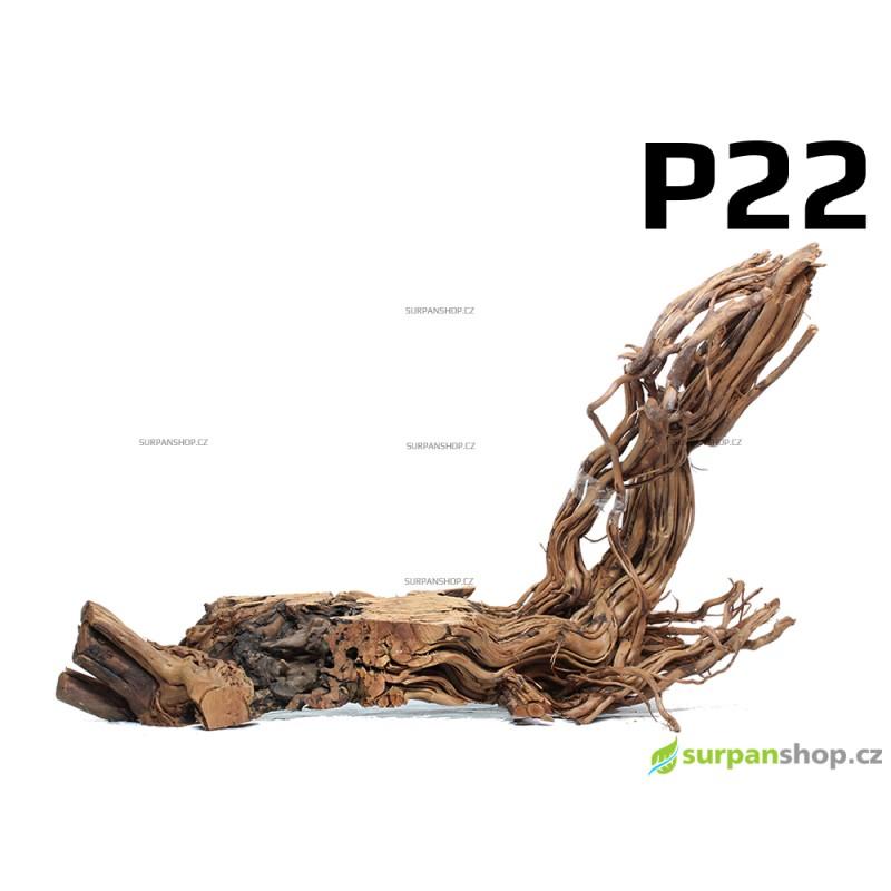 Kořen Dragon Wood 67cm - P22
