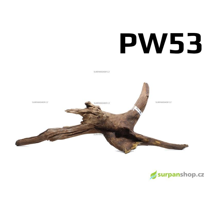 Kořen Plants Wood 62cm PW53