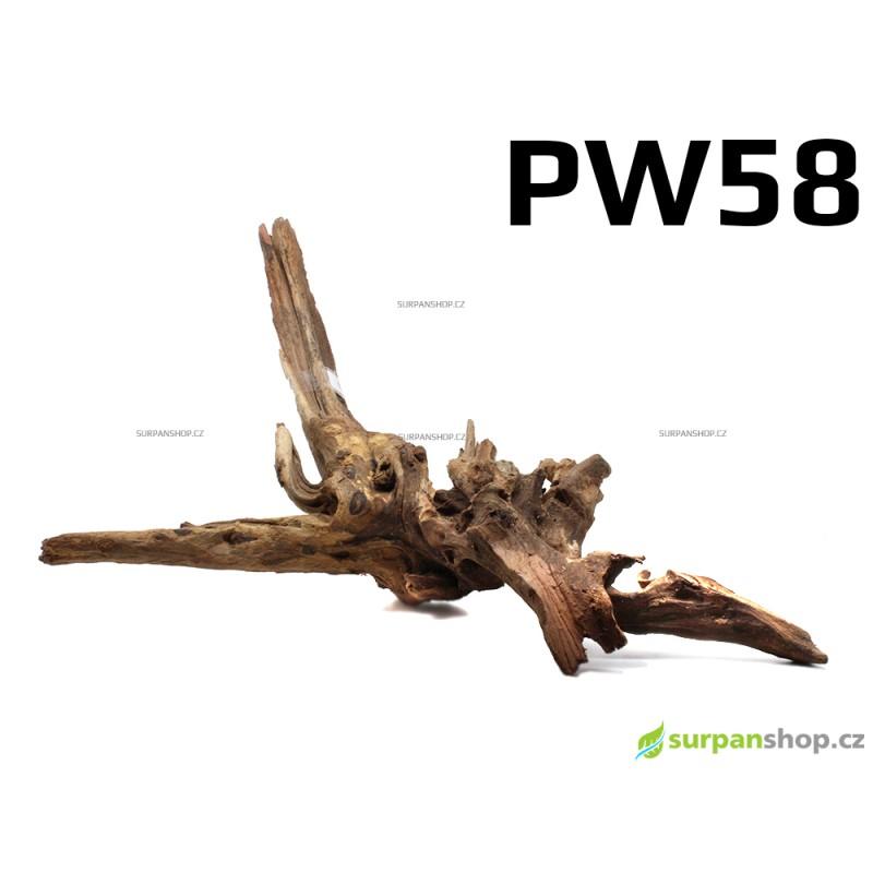 Kořen Plants Wood 50cm PW58