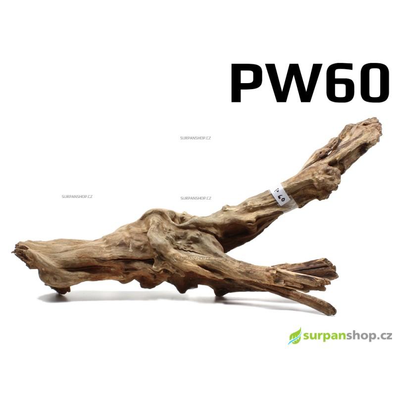 Kořen Plants Wood 48cm PW60