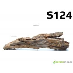 Kořen Mangrove 32cm - S124