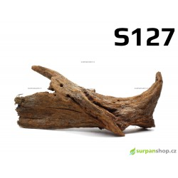 Kořen Mangrove 22cm - S127