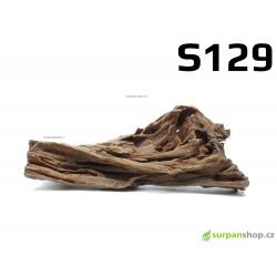 Kořen Mangrove 25cm - S129