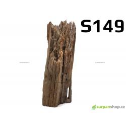 Kořen Mangrove 22cm - S149