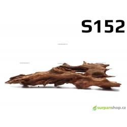 Kořen Mangrove 29cm - S152