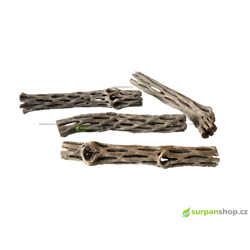 Cholla Wood ø 2 cm, 14 - 16 cm